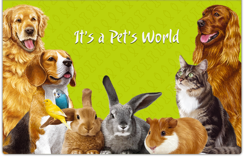 It's a Pet's World
